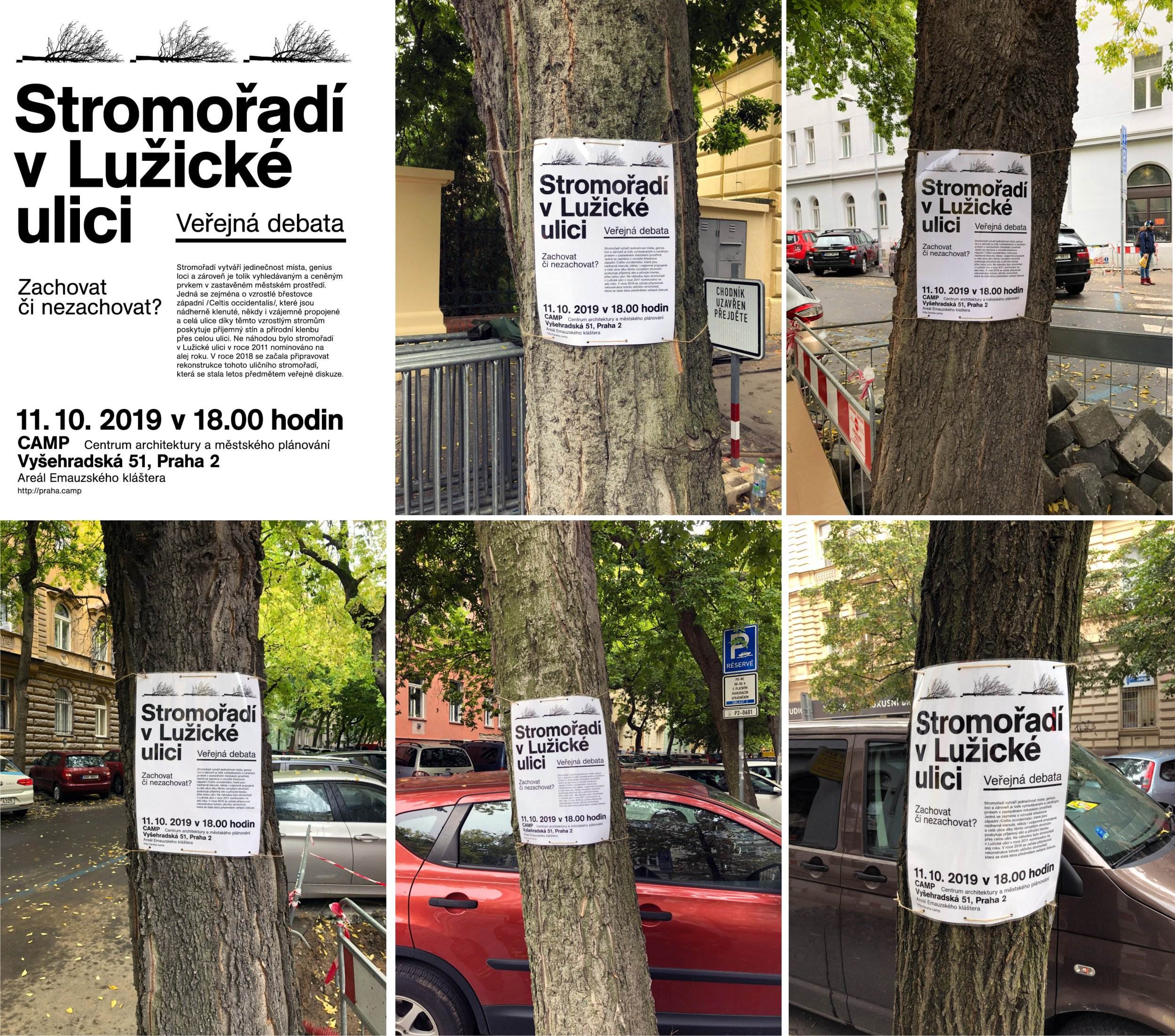 Veřejná debata o stromořadí v Lužické ulici (video)